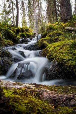 Pyhäjoki creeks