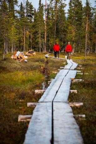 Brand new boardwalks