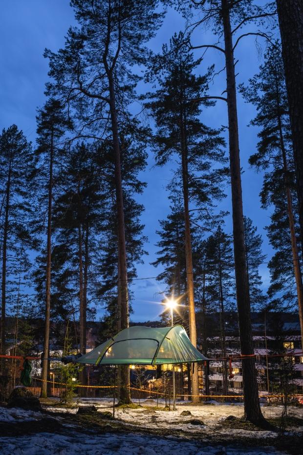 Metsähotelli_Harju-145